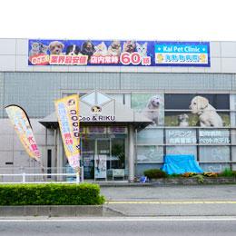 大豆島店舗3